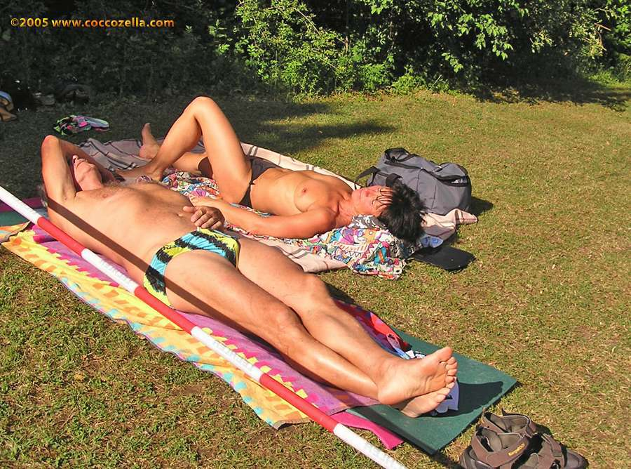 Ameise Augsburg Coccozella Nudist Photography