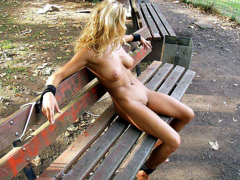 Tied on a park bench